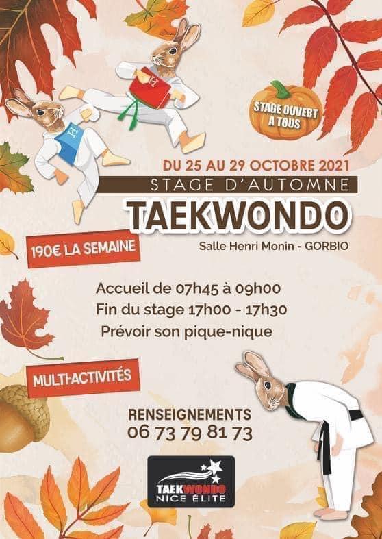 stage taekwondo gorbio, nice